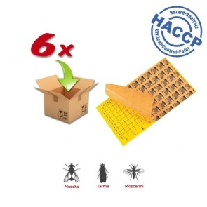 6xPiastra Collante compatibile con FLY CATACHER MONO BLASTER 60